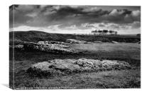ARBOR LOW STONE CIRCLE, Canvas Print
