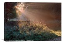 SHAFTS OF LIGHT, Canvas Print