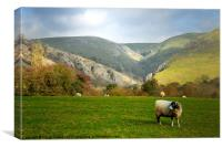 DOVEDALE, Canvas Print
