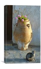 CRETAN CAT, Canvas Print