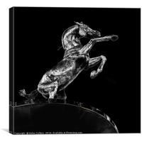 RAMPANT HORSE                                    , Canvas Print