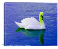 Green Crowned Swan