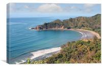 costa rican beach, Canvas Print