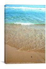 Beach Worm, Canvas Print