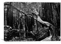 Black and White Trees, Canvas Print