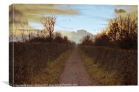 Bowes Path Home 3, Canvas Print