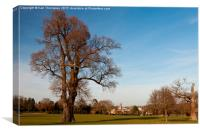 Bowood Country House, Canvas Print