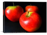 Three Apples, Canvas Print
