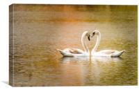 Swan love, Canvas Print