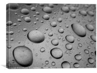 Water Beading on car after a polish, Canvas Print