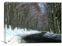 Mountain Pass in the Snow, Canvas Print