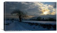 The winter glow of a snowy landscape, Canvas Print