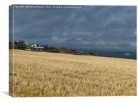 Barley Stubble in sunlight as the storm clouds gat, Canvas Print