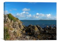 The Ram Harry sound and Copeland Islands, Canvas Print