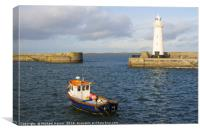 The lighthouse at Donaghadee Harbour, Canvas Print