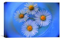Flower PD, Canvas Print