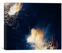 , Fourth of July, Beautiful Red Fireworks, Canvas Print