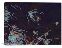 Fourth of July sky in Montana Fireworks, Canvas Print