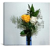White and yellow Roses, Canvas Print