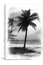 Palms Tree, Canvas Print