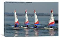 Four lazers dinghy's, Canvas Print