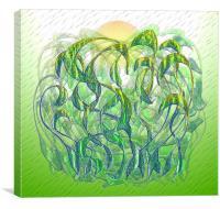 Sunlight on Wet Grass, Canvas Print