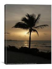 Coconut Palm at Sunrise, Canvas Print
