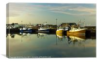 Fraserburgh Yellow and Blue Boats