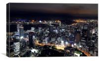 Tokyo at night, Canvas Print