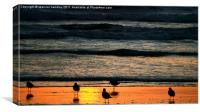 Sunset Scavenging, Canvas Print