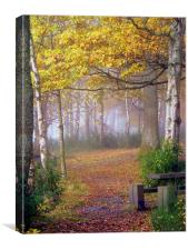 Misty Autumn, Canvas Print