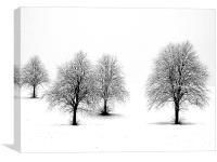 """Snowy Treetops"", Canvas Print"