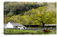 Spring at the Farm, Canvas Print