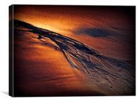 Golden Sand, Canvas Print