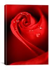 Red Swirl, Canvas Print