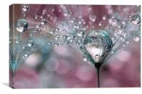 Rasberry Sparkles, Canvas Print