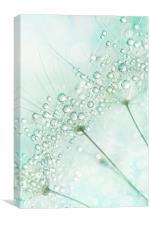 Baby Blue Sparkles, Canvas Print