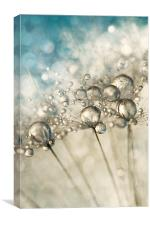 Sapphire & Silver Sparkle, Canvas Print