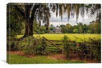 Magnolia Plantation, Canvas Print