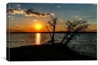 Sunset Silhouette, Canvas Print