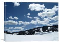 Snowmobile Paradise, Canvas Print