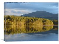Loch Garten, Scotland, Reflections, Canvas Print
