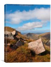 The Lurcher`s Crag, Cairngorms National Park, Canvas Print