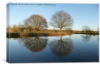 River Stour, Reflections  , Canvas Print