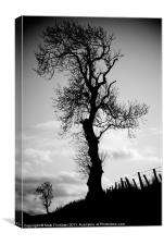 Tree and Friend, Canvas Print