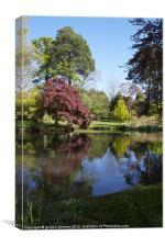Reflections in Exbury garden pond, Canvas Print