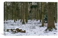 A snowy new forest scene with deer in the distance, Canvas Print