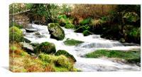 Glentenassig River, Canvas Print