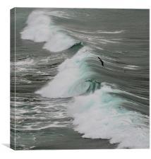 Wave, Canvas Print