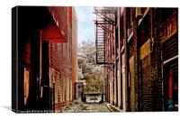 Urban Back Alleyway, Canvas Print